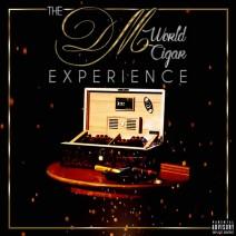 Album Cover dm world experience